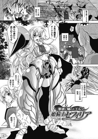 獣欲に穢れたエルフ 姫騎士セフィリア【単話】