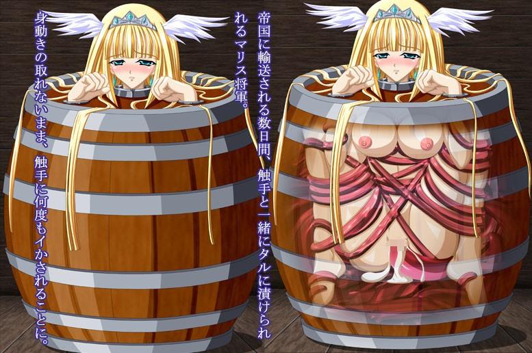奴隷姫将軍マリス〜恥辱の捕虜調教〜